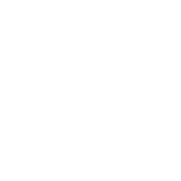 REST Countries